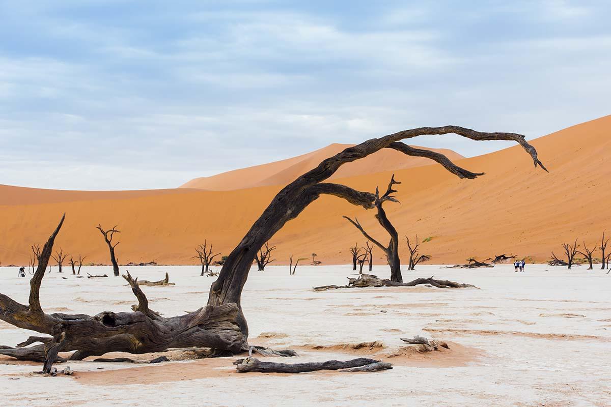 Namibia Rundreise - Erfahrungsbericht